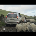 Inghilterra & Galles Off-Road  by  Aventures  4x4